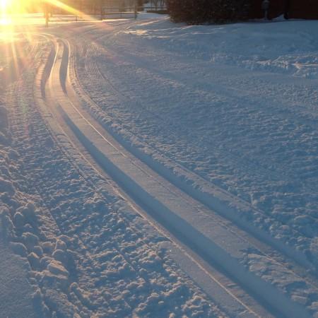 Ski Trail Alt Text